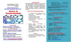 Basics in Nanotechnology Workshop