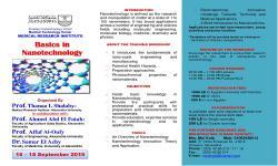 Basics in Nanotechnology Workshop